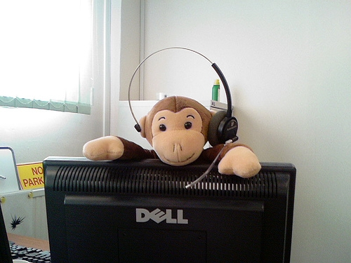 Monkey Coworkers